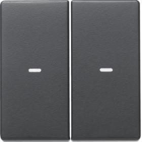 Μετώπη Μπουτόν KNX 2 Πλήκτρων Φωτισμού Ανθρακί Q.x