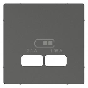 Μετώπη Πρίζας Διπλής USB Ανθρακί System-M
