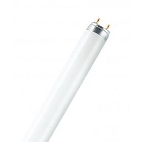 Λάμπα Φθορίου T8 14-16W 4500k G13 LEUCI
